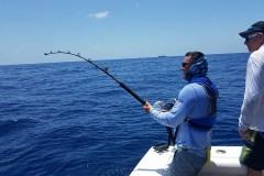 Deep Drop Fishing Charter