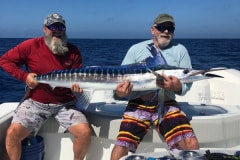 Marlin Deep Sea Fishing