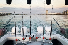 Freeman 42 Tower Fishing