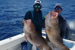 grouper Fishing pair