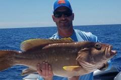 grouper deep drop single