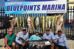 Port Canaveral Swordfish Fishing Charters