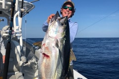 Yellow Fin Tuna Fishing Charters